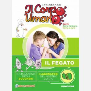 """Fascicolo """"Il fegato"""" + DVD in HD"""