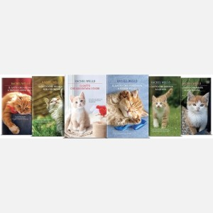 OGGI - Le avventure del gatto Alfie