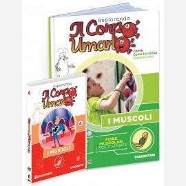 """Fascicolo """"I muscoli"""" + DVD in HD"""