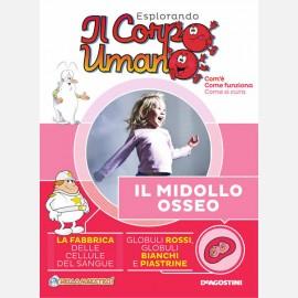 """Fascicolo """"Il Midollo osseo"""" + DVD in HD"""
