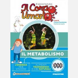 Il metabolismo