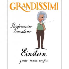 Baccalario / Ferrario, Einstein, genio senza confini