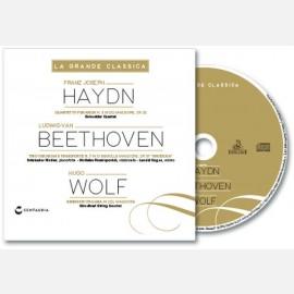 Franz Joseph Haydn, Ludwigvan Beethoven, Hugo Wolf