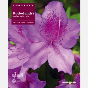 Rododendri, azalee ed eriche