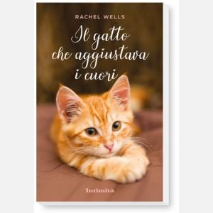 """Intimità + libro """"Il gatto che aggiustava i cuori"""""""